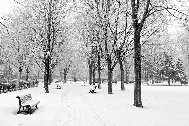 First big snow in Montreal--11/17/2014