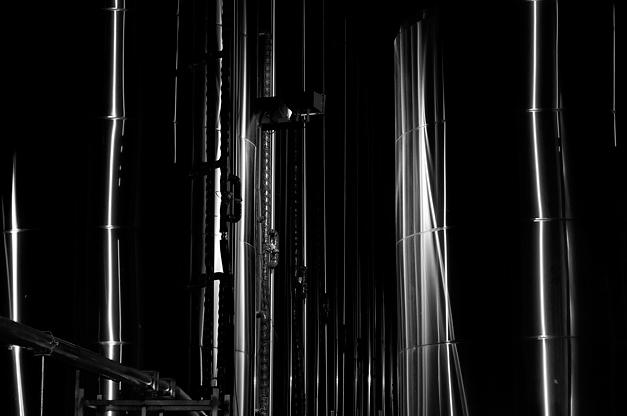 Lagunitas abstract