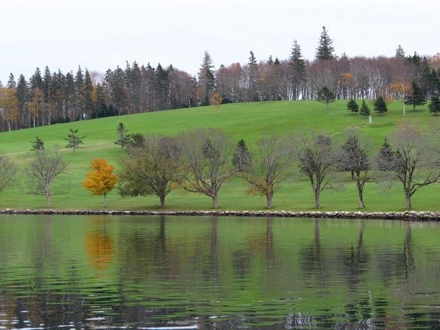 Lunenberg, yellow tree reflection